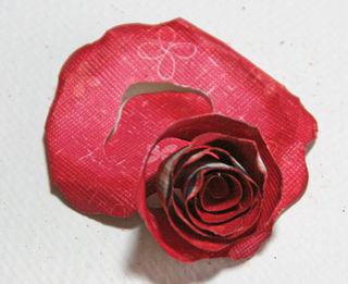 Rose- step 6