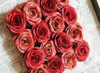 Framed roses- close up