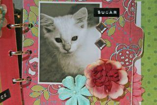 Flowers- sugar