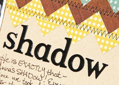Anna'sShadow_dtl1_NancyB